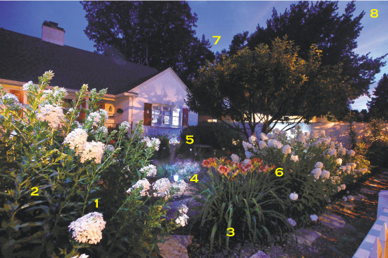 Blog trends for Under the garden moon